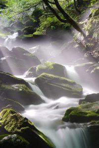 schone natuur