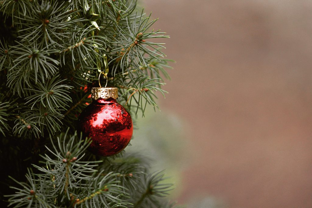 Kerstboom weggooien